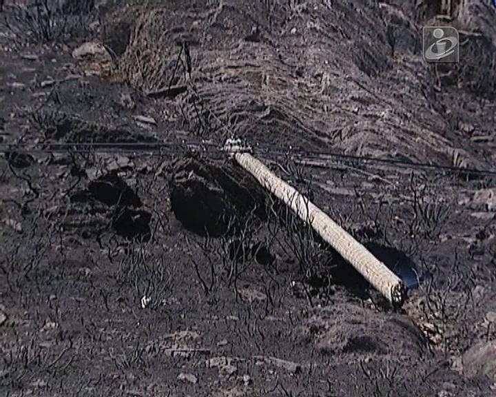 Incêndio no Distrito de Viseu queimou mato, eucalipto e pinhal