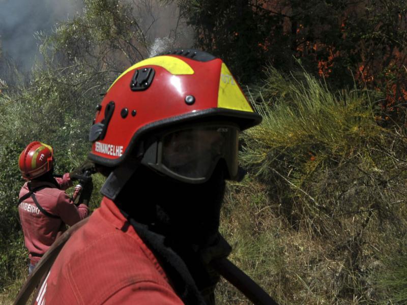 Incêndio em Nelas (LUSA)