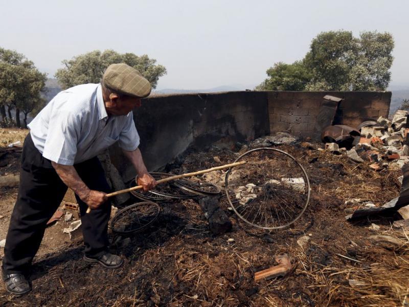Incêndio em Mogadouro