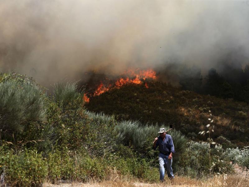 Incêndio em Bragança (Lusa/José Coelho)