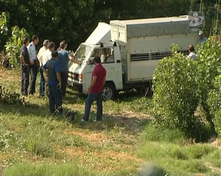 Vila Real: Touro foge e fere duas pessoas em hospital