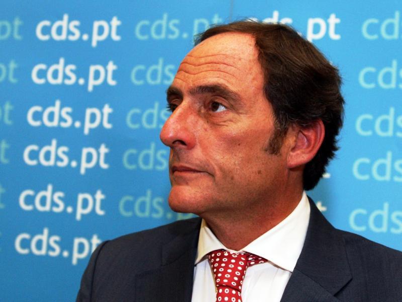 Paulo Portas no Conselho Nacional do CDS-PP (José Coelho/Lusa)