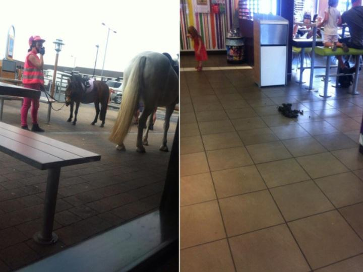 Cavalo entrou no McDonalds (Foto retirada do Twitter de Holly Sinar)