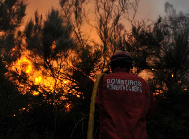 Incêndio em Miranda do Douro (NUNO ANDRE FERREIRA/LUSA)