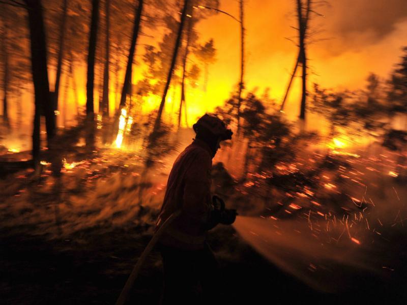 Incêndio em Moimenta da Beira (Nuno André Ferreira/Lusa)