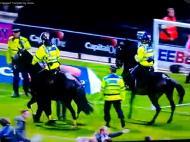 Steward atropelado por cavalos
