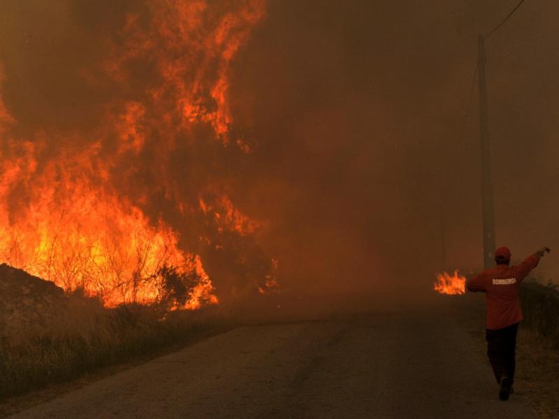 Incêndio em Sátão, Viseu [LUSA]