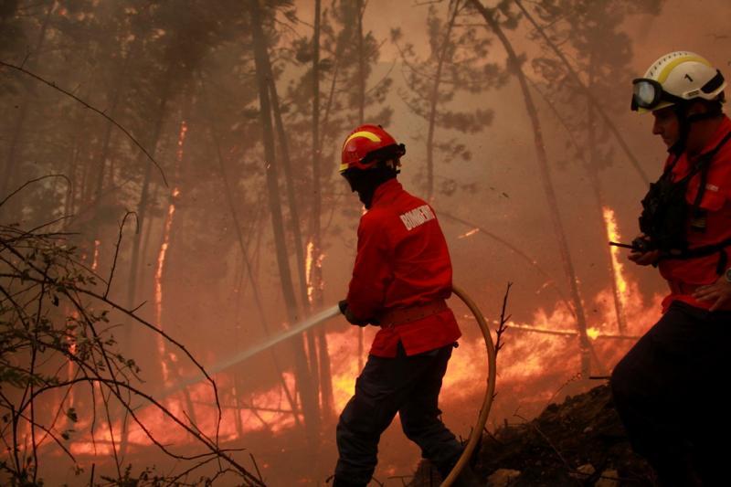 Incêndio em Penacova [LUSA]