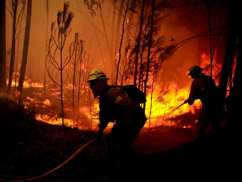 Incêndio em Miranda do Corvo [LUSA]