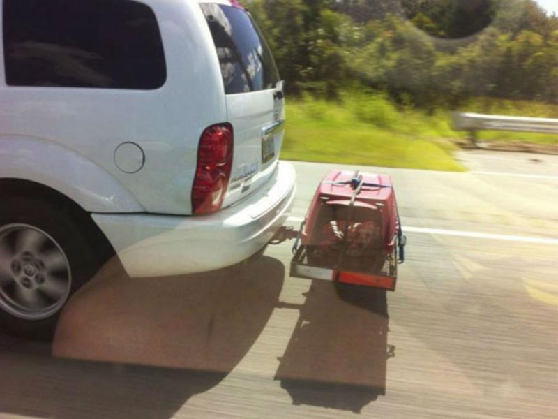 Cão transportado em caixa agarrada a veículo