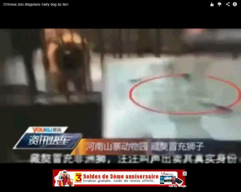 Zoo na China