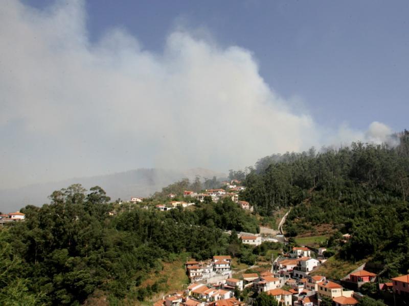 Incêndio no Funchal [LUSA]