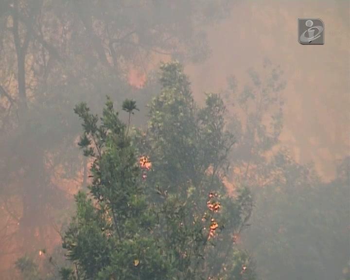 Incêndio no Funchal: 100 bombeiros e 20 viaturas combatem as chamas