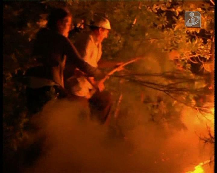 Estado gasta mais no combate aos fogos do que na prevenção