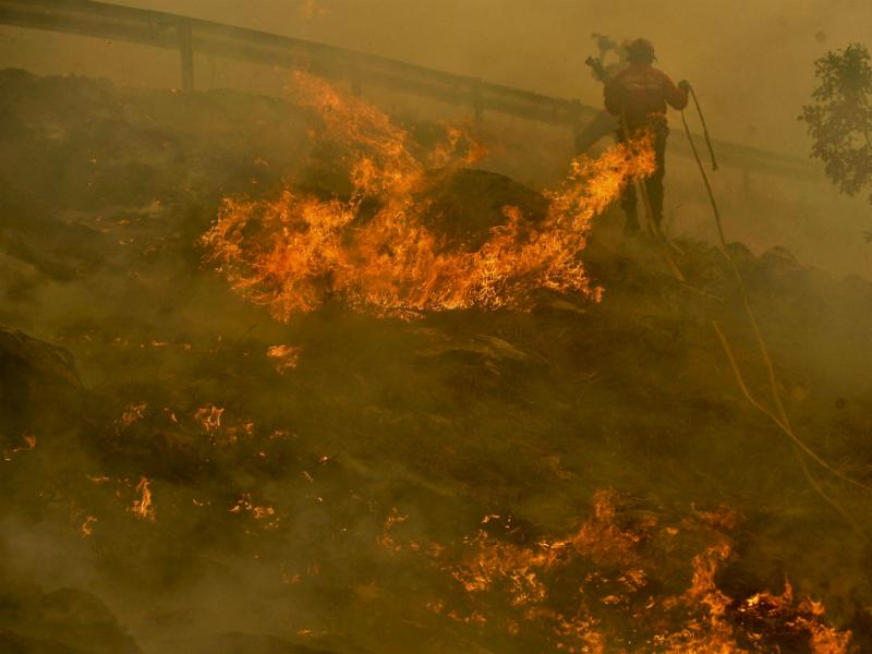 Fogo na Serra do Caramulo (Lusa/Nuno André)