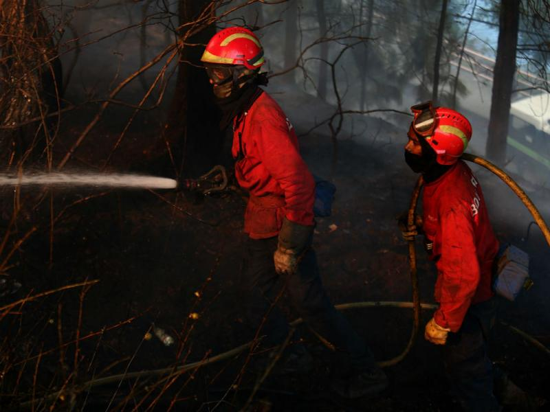 Incêndio em Gondomar (Lusa/José Coelho)