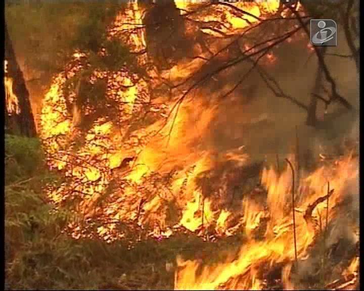 Morreu bombeiro ferido no incêndio do Caramulo