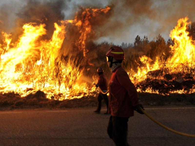 Incêndio de Vila Nova de Paiva (Lusa)