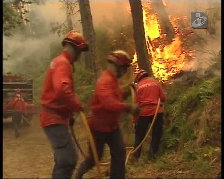 Seis bombeiros mortos nos fogos florestais deste Verão