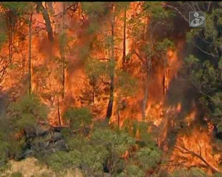 Chamas destroem mais de 100 mil hectares de floresta na Austrália