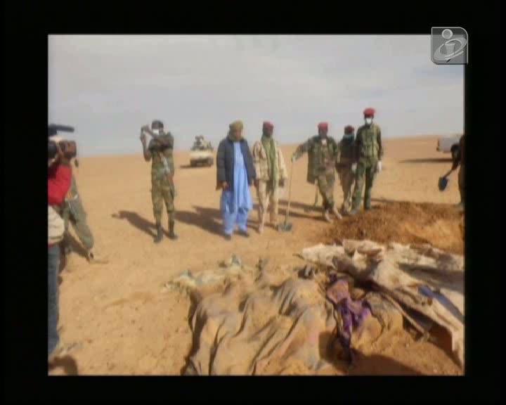 Mortos no Níger