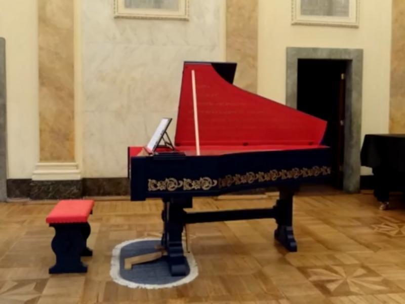 Viola organista (Reprodução / Youtube / Sławomir Zubrzycki)