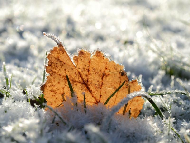 Inverno (EPA/UWE ZUCCHI)