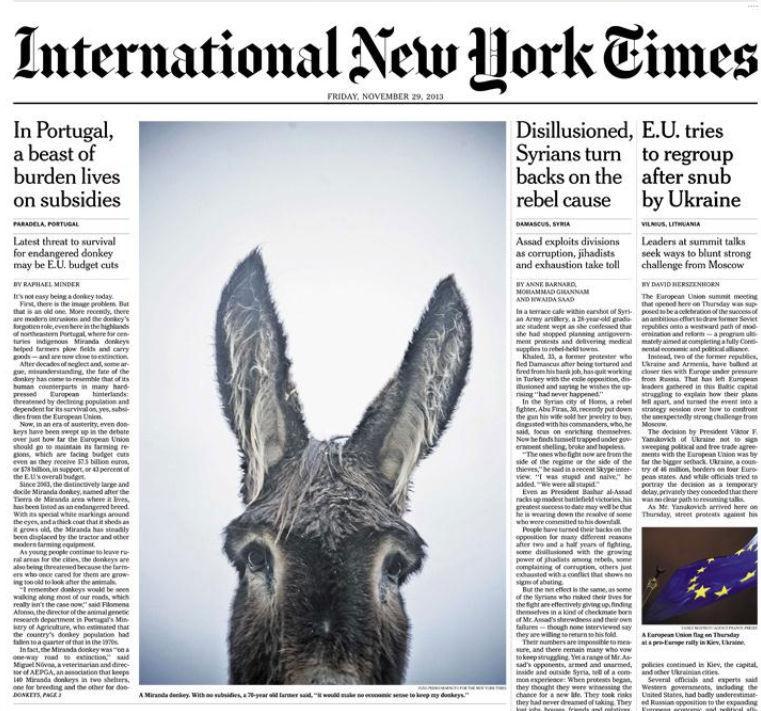 New York Times faz manchete sobre burros mirandeses (Reprodução / New York Times)