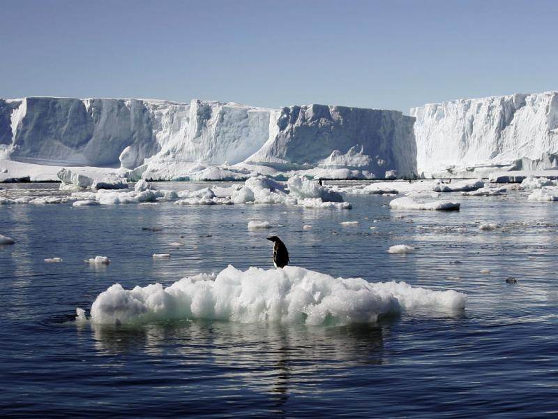 Antártica (Reuters)