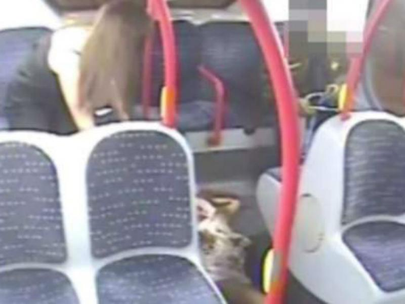Londres: agressão num autocarro deixa jovem inconsciente (Reprodução Sky News)