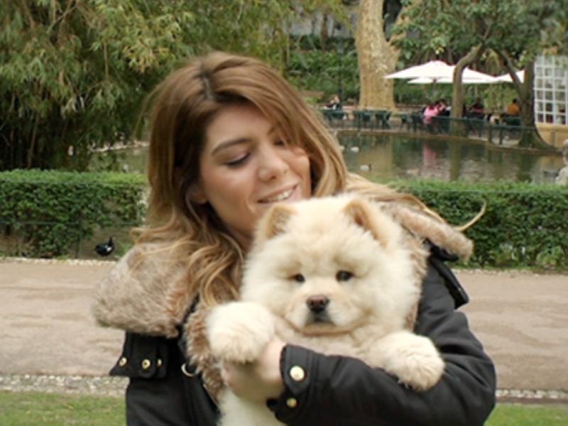 Cão de Raquel Strada chega à revista «Time» (Reprodução Facebook)