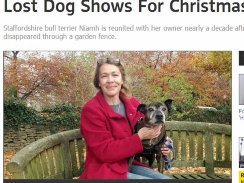 Cadela regressa a «casa» nove anos depois (Reprodução / Sky News)