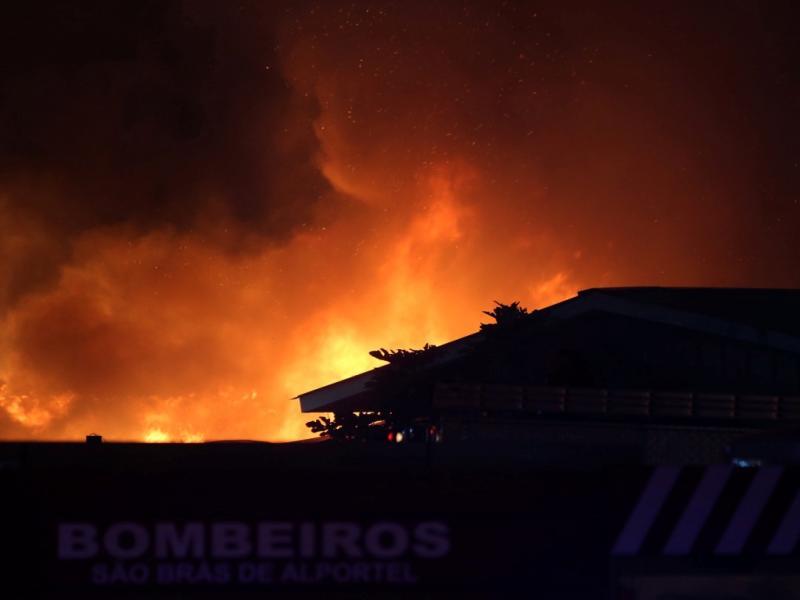 Incêndio em bairro social de Faro [LUSA]