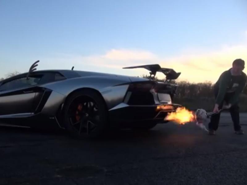 Jovem assa peru num Lamborghini (Reprodução / Youtube / Shmee150)