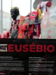 Estátua de Eusébio já se encontra protegida (LUSA)
