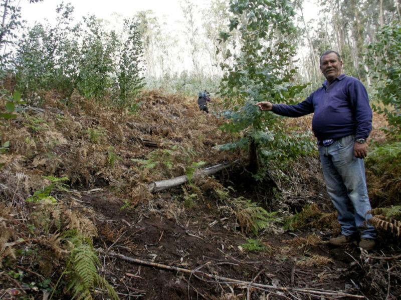 Madeira: local onde menino de 18 meses foi encontrado (Lusa)