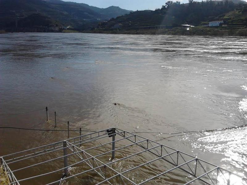 Cheias do rio Douro (foto enviada por Paulo Barros)