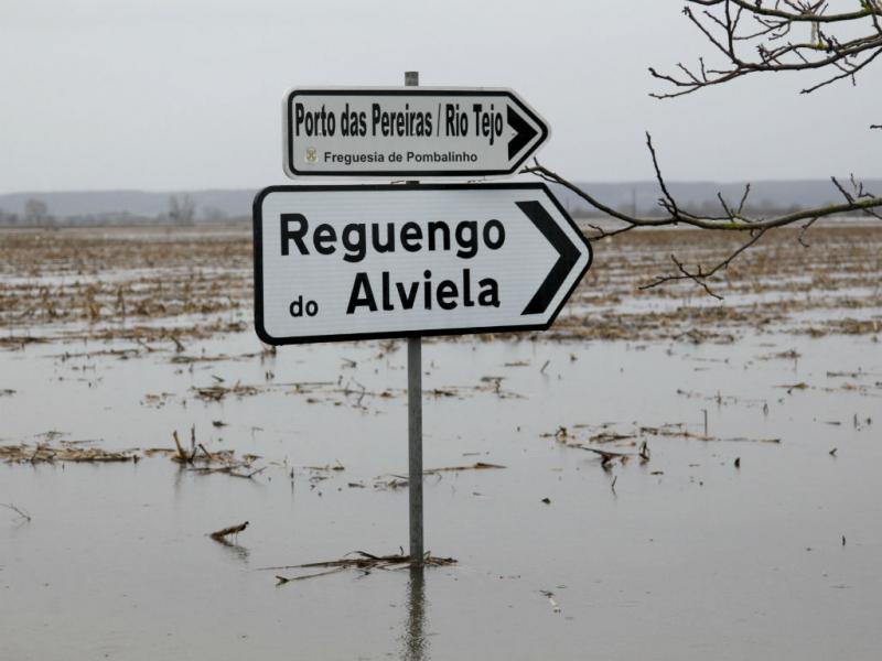 A povoação de Reguengo do Alviela (Santarém) está isolada devido à subida das águas na bacia do Tejo. PAULO CUNHA/LUSA