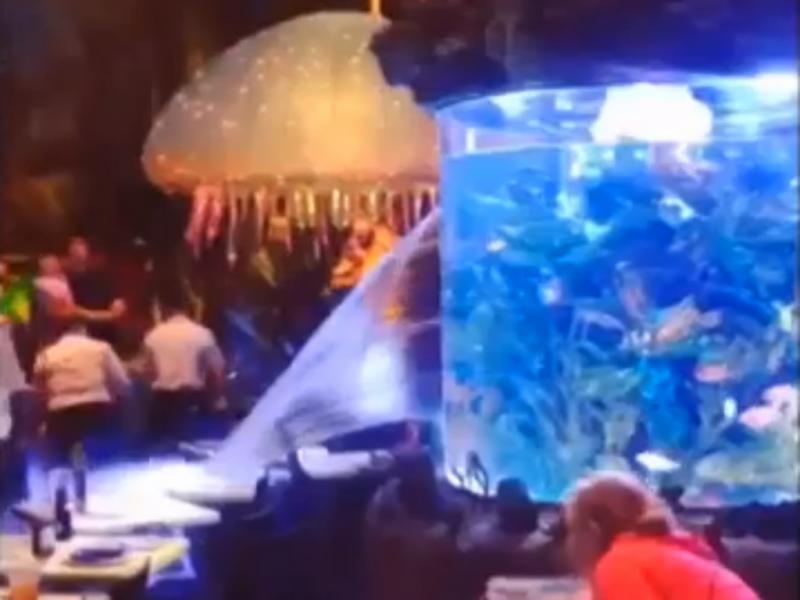 Vidro de aquário quebrou-se e Inundou restaurante