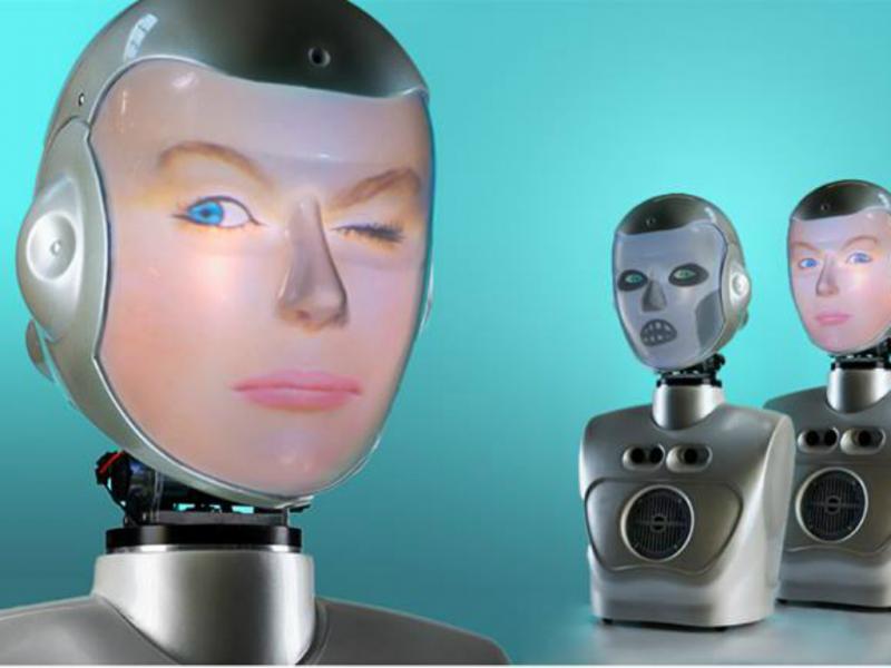 1 em cada 5 pessoas admite que teria relações sexuais com um robô (reprodução de Facebook)