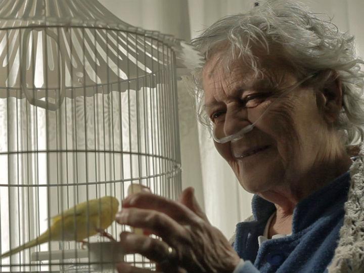 Celeste Ribeiro, de 82 anos, vence Prémio Melhor Atriz na Roménia
