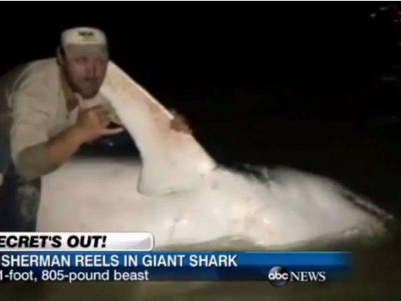 Pescador apanhou tubarão mako com mais de três metros (Foto reprodução de YouTube)
