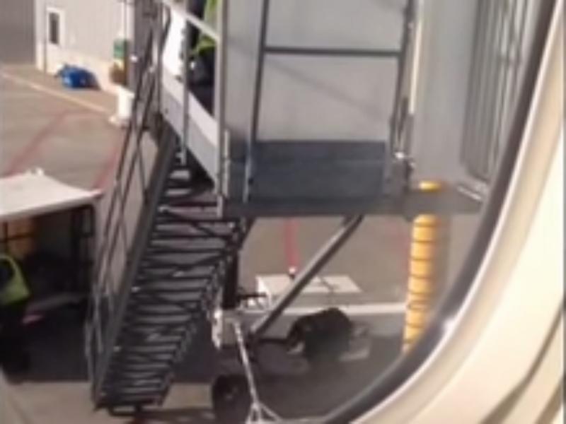 Funcionários da «Air Canada» atiraram as malas dos passageiros a uma altura de 6 metros (Foto reprodução de YouTube)