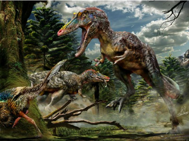 Fósseis de «Pinóquio Rex» encontrados na China (Chuang Zhao/University of Edinburgh/PA)