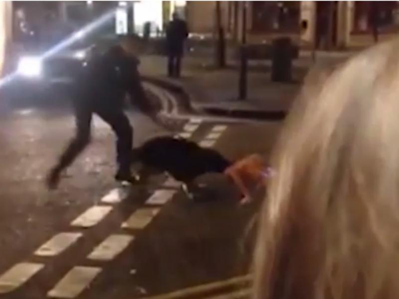 Cão polícia mordeu suspeito que já se encontrava deitado (Foto reprodução de YouTube)