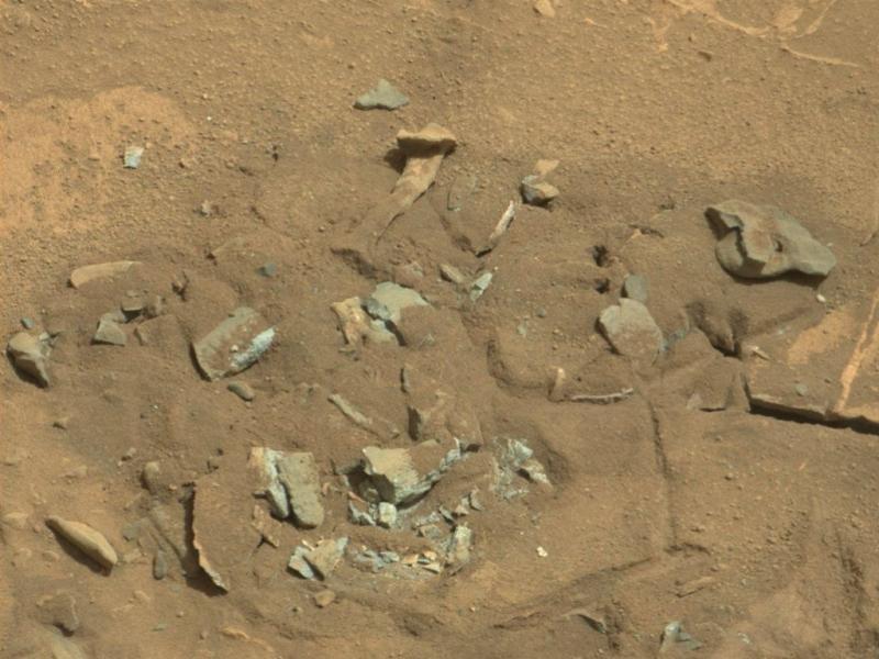 Será o osso de um extraterrestre? (NASA)