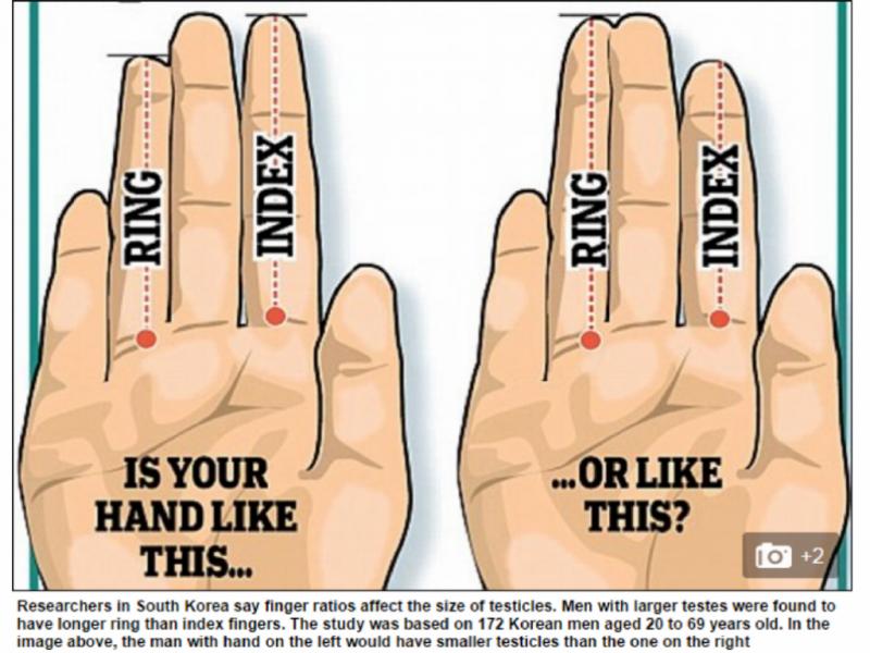 Dedo indicador revela o tamanho dos testículos [Foto: Reprodução/Daily Mail]