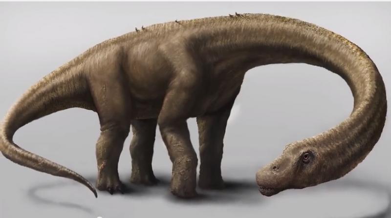 «Dreadnoughtus schrani» viveu há 77 milhões de anos na Patagónia