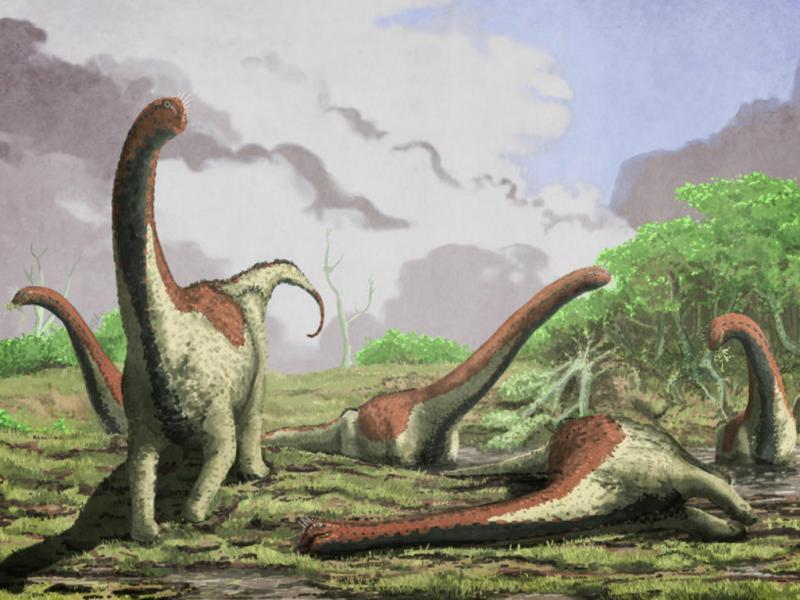 Titanossauro «Rukwatitan Biseputus» (AFP)