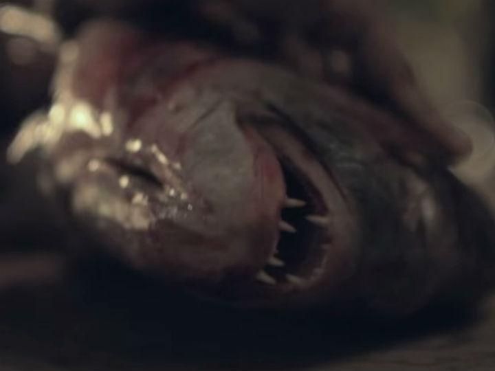 «Pela boca morre o peixe» vence MOTELx